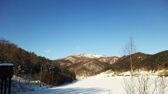 01・2010年 元日 - コピー.JPG