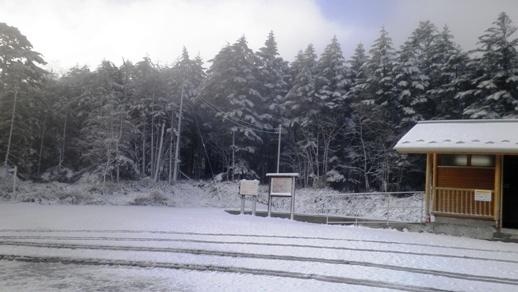 04 麦草峠   季節外れの雪 - コピー.JPG