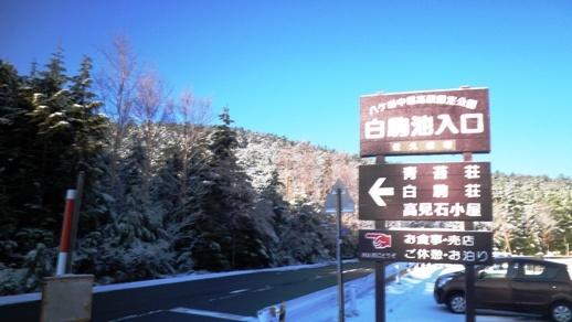 06 麦草峠を通り過ぎ白駒池へ - コピー.JPG