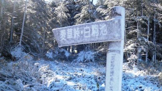 11 八ヶ岳少しでも登りたいので麦草峠に戻る - コピー.JPG
