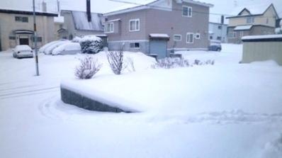 4 30日朝   積雪23センチ - コピー.JPG