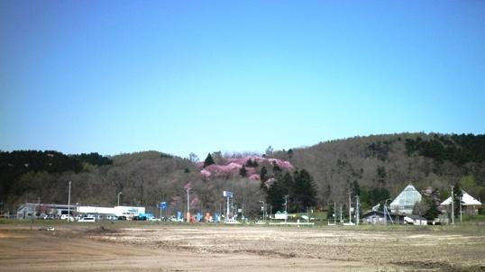 P5020042 - コピー.JPG